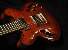 Semi-Hollow Body gitaar reviews