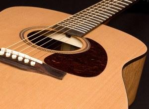 Seagull S6 gitaar