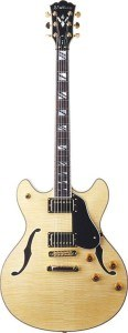 Washburn HB35 beginners gitaren