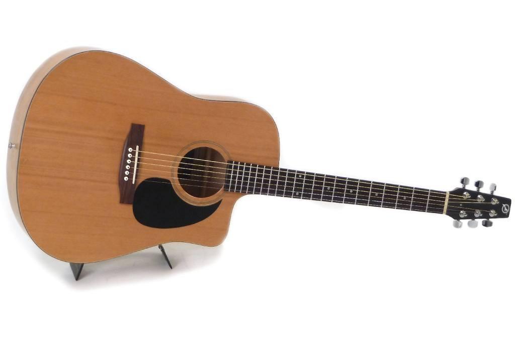 gitaar Seagull S6 review