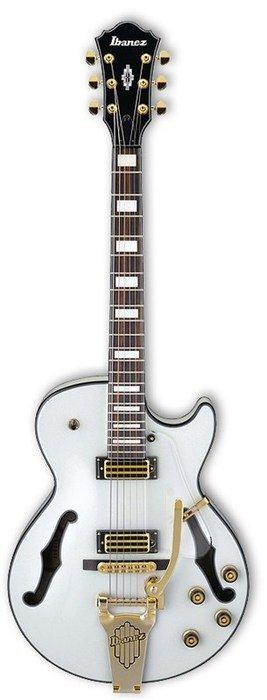 ibanez elektrisch akoestische gitaar kopen