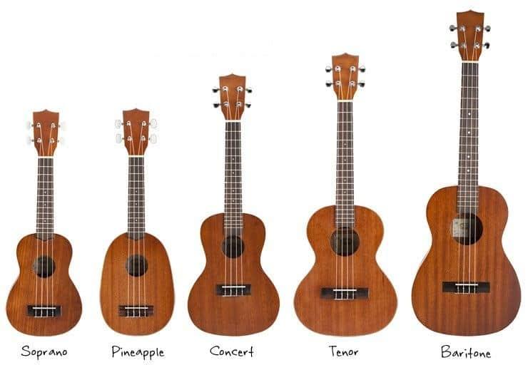 soorten ukelele gitaren koopgids